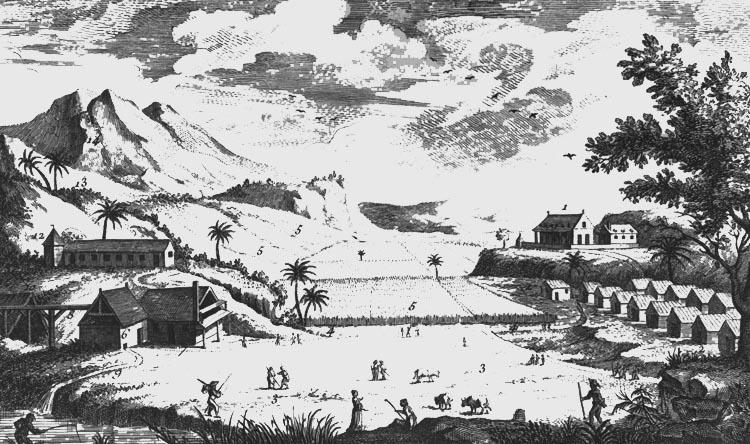 Sukkerplantage, U. S. Virgin Islands